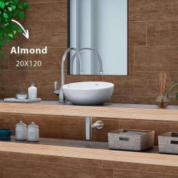Almond 20 x 120